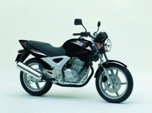 Honda CBF250 PINGUINOS