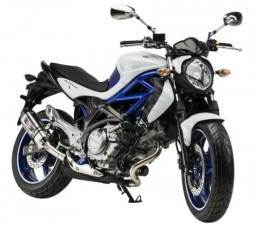 suzuki-gladius-650-sport_01-500x447