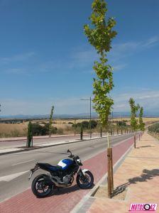 Gladius panorama