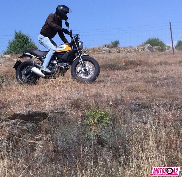 Como una moto campera