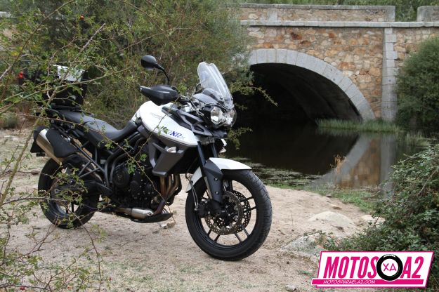 General de moto Triumph Tiger 800 y puente_result
